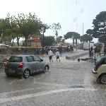 Stormy Cassis