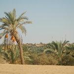 De ruta por los alrededores del Oasis