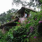Made villa