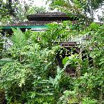 Foto de Taman Bebek Villas