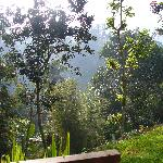 Vue de notre villa vers la droite
