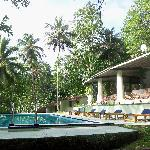 Pool at the Tulip of Ceylon