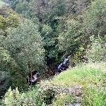 Waterfall in the garden