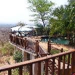 Hotel pool overlooking watering hole