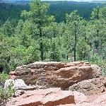 Rim Trail Pinetop-Lakeside, AZ