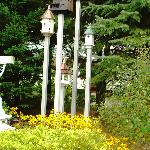 some of the many birdhouses at Phineas-Swann