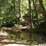 Creekside trail...