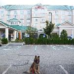 My dog Vinnie in front of hotel