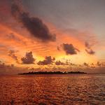 Sunset on Dolphin Trip