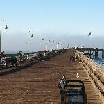 the municipal wharf