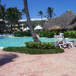 LTI Pool Looking Towards the El Bucanero