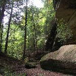 Ash Cave creekbed @ Hocking Hills