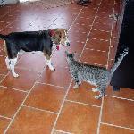 Kiko and Felix at Hotel Julamis