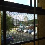 View from window (the windows open)