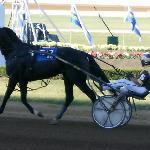2008 Kentucky Futurity Final - Deweycheatumnhowe 1