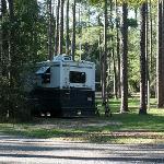 Our campsite #19