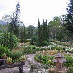 The garden is beautiful