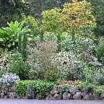 Mediterranean Garden in Parking Lot