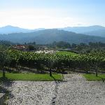 The outdoor recreation area, the vineyards and olive groves and the mountains