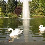 The pond at Lakeside Park - Klagenfurt