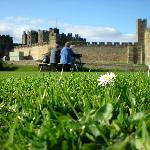 The walk from Alnwick castle to the gardens