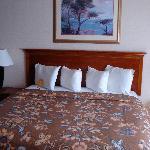 Foto di Holiday Inn Hotel & Suites