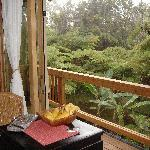 Waking up in a rain forest with the volcano only minutes away