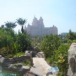 View from Aquaventure