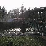 Foto de Terme Francescane Village