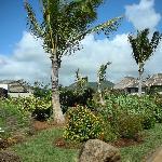 012 - FSMRU - Paths and beautiful landscaping