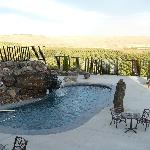 Pool, hot tub and orchard