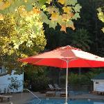 pool area + hottub
