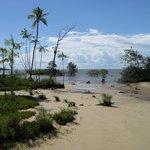 spiagge fluviali vicino a Belem (3)