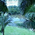 Platypus lake