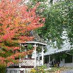 Sugartree inn the Fall