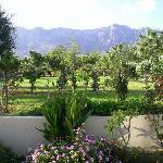 Garden, view of mountains