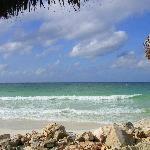 Beach Erosion from Omar