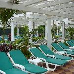 Plenty of Chairs Poolside