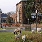 Parkend Village