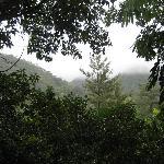 View from deck of 'Buluru' Studio