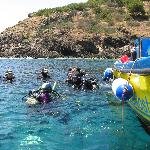 Diving in Ustica