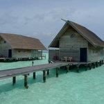 Photo de Cocoa Island by COMO