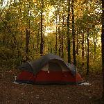 Houchins Ferry Campground resmi
