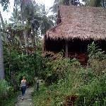 bungalow at Narima