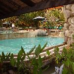 pool near swim up bar