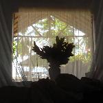 vue de notre lit... le matin