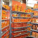 The candy stores are phenomenal