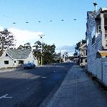 main street manzanita in winter