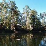 Cabin Ridge