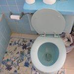 Toilet, very dirty, broken seat, etc.